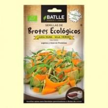 Semillas de Soja Verde Brotes Eco - 36 gramos - Batlle