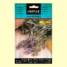 Lavanda Officinalis - Batlle - Semillas de Plantas Medicinales