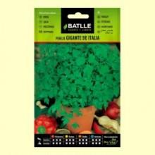 Perejil Gigante de Italia - 25 gramos - Batlle