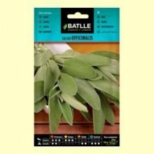 Semillas de Salvia Officinalis - 1,5 gramos - Batlle