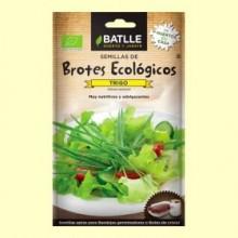 Semillas de Trigo Brotes Eco - 33 gramos - Batlle