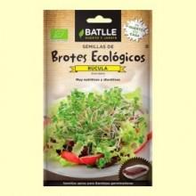 Semillas para Germinar Brotes Ecológicos de Rúcula - Batlle