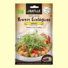 Semillas de Hinojo Brotes Eco - 10 gramos - Batlle