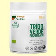 Hierba de Trigo Verde Pulverizado Eco - 200 gramos - Energy Feelings
