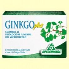 Ginko Plus - 30 cápsulas - Specchiasol