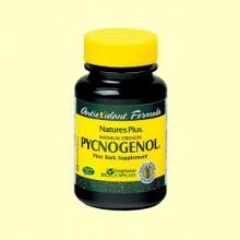 Pycnogenol - Efecto antioxidante - 30 cápsulas - Natures Plus