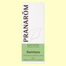Ravintsara Aceite esencial - 10 ml - Pranarom