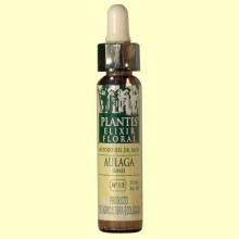 Aulaga - Gorse - Cultivo Ecológico - Plantis - 10 ml