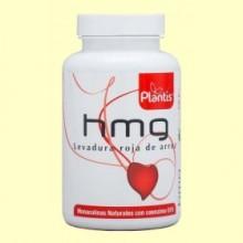 HMG Levadura Roja de Arroz - 120 cápsulas - Plantis