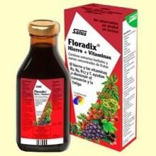 Floradix Elixir - 500 ml - Salus