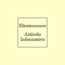 El Eleuterococo - Artículo informativo de Rafael Sánchez - Naturópata