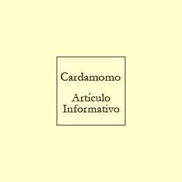 El Cardamomo - Artículo informativo de Rafael Sánchez - Naturópata