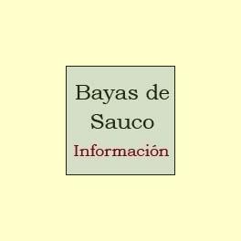 El extracto de Bayas de Saúco - Información