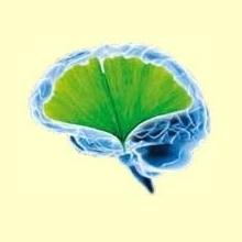 Desórdenes Neurodegenerativos e Insuficiencia Mitocondrial - Información