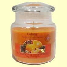 Vela Tarro con aroma Mandarin & Cedarwood - 1 unidad - Colony