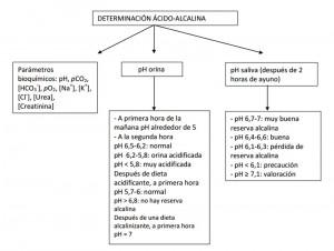 Determinación ácido-alcalina