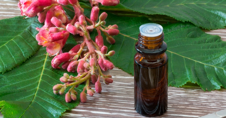 flores-de-bach-de-rescate-38-remedios-florales