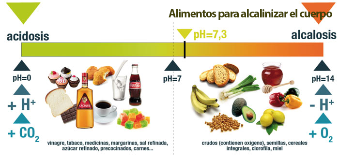 Alimentos-para-alcalinizar-el-cuerpo