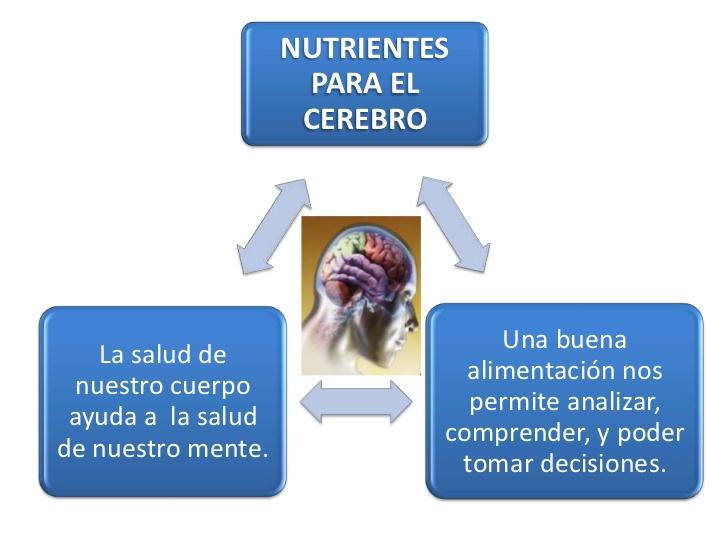 nutrientes-2-728