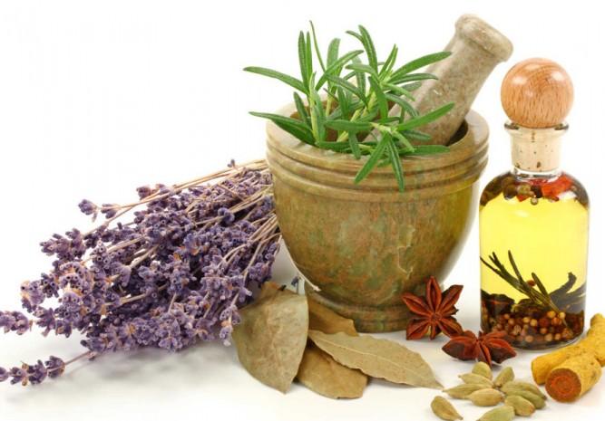 que-es-una-planta-medicinal-remedios-caseros-paracticos-remediospractico.com_-667x465