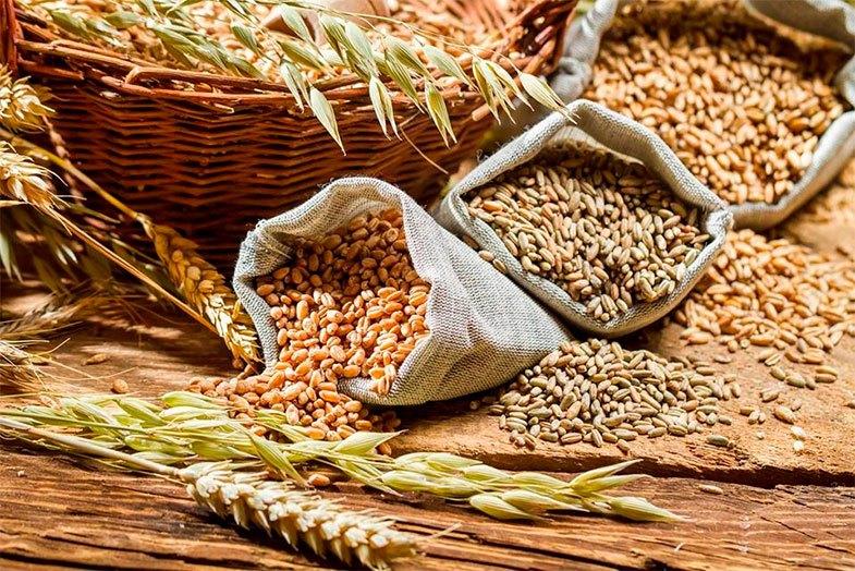 cereales integrales alimentación saludable beneficios y tipos