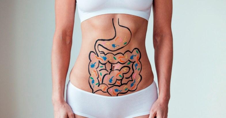 los alimentos naturales capaces de mejorar el sistema inmunologico