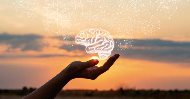principal fuente de energia para el cerebro rendimiento intelectual