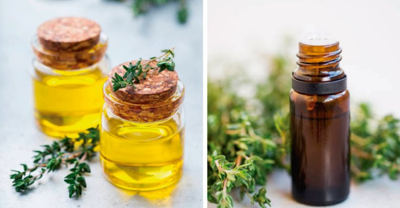 aceite esencial de tomillo antiinflamatorio cicatrizante antiinflamatorio digestivo antioxidante