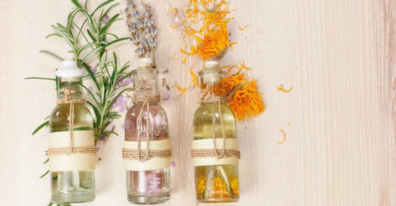 plantsa-propiedades-medicinales
