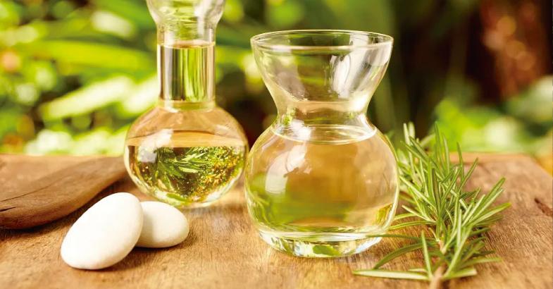 romero-propiedades-medicinales-aceite