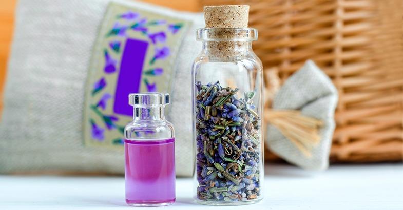 lavanda-planta-insecticida-remedio-casero-anti-mosquitos