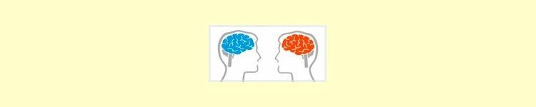 Circulación Cerebral