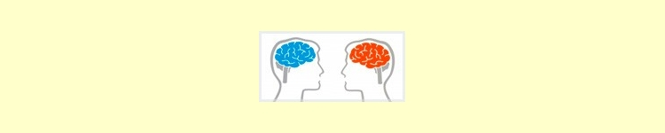 Mejoran la Circulación Cerebral