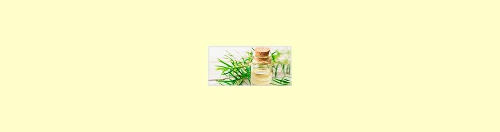 Aceite del Árbol de Té