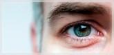 Ojos y Vista